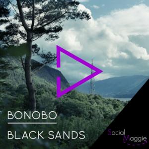 Bonobo-socialmaggie